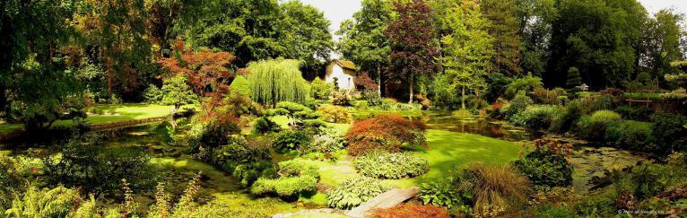 Un jardin